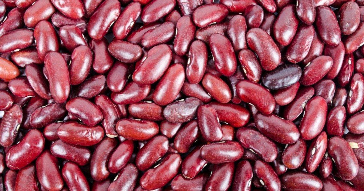 Kidneybohnen sind ein perfektes Lebensmittel zum Abnehmen