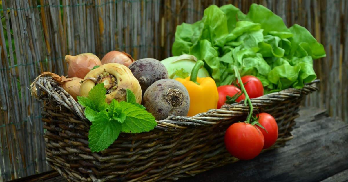 Regeln für eine gesunde Ernährung