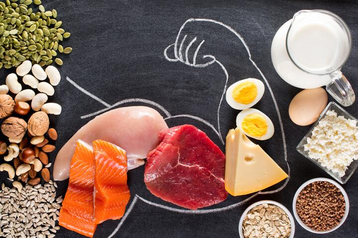 Eiweißhaltige Lebensmittel zum Abnehmen